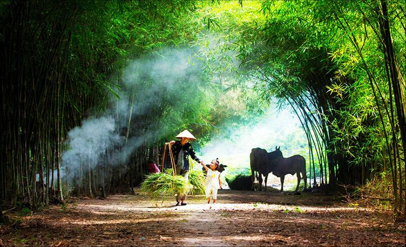 Tâm sự của một người con Việt Nam yêu cải lương tha thiết.